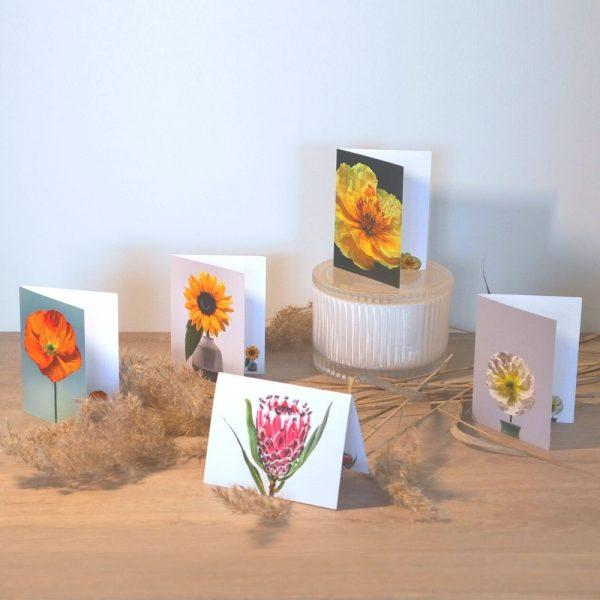 Olivia Felicity Gift Cards